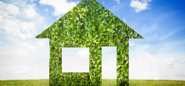 Your roof can help the enviroment