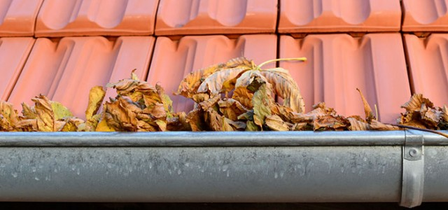 Cleaning your gutters and downpipes