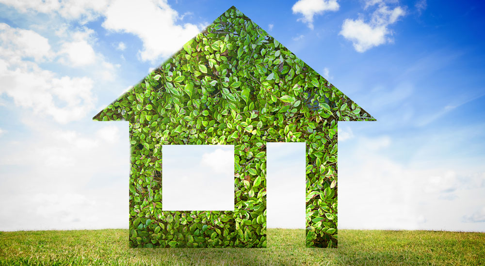 How Your Roof Can Help The Environment